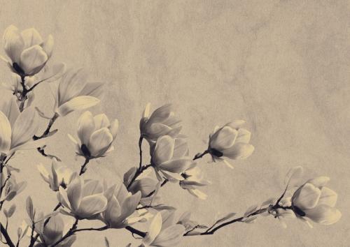Fleurs deuil  copier.jpg